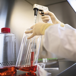 Research scientist working with a roller bottle in the Spark Therapeutics laboratory