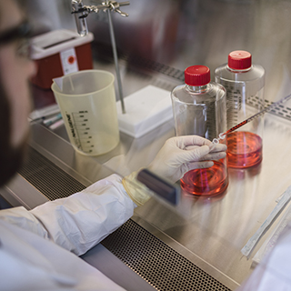 Research scientist transferring contents from roller bottles to vials in the Spark Therapeutics laboratory