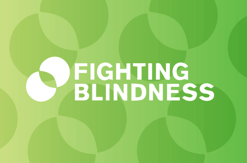 Supporting Fighting Blindness Ireland's Annual Retina Conference